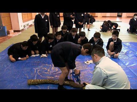 種子島の学校活動:野間小学校林業教室しいたけ育成体験・桜記念植樹