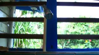 preview picture of video 'room 21, xtabi hotel.  negril, jamaica'