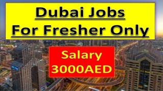 Fresher Jobs In Dubai For Everyone Apply Fast Online Only .
