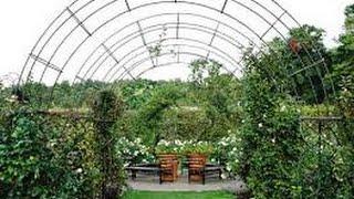 Как сделать арку под виноград. Сад и огород.