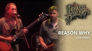 The Teskey Brothers   Reason Why   Live At Melbourne Zoo