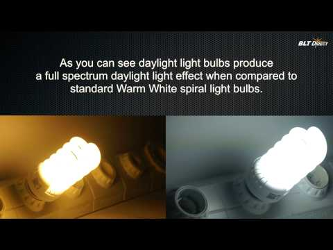 Energy Saving Spiral Colour Temperature Comparisons (Warm White v Daylight)