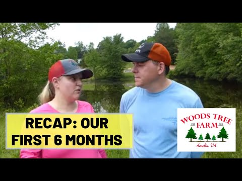 , title : '#43 Starting A Christmas Tree Farm - Our First 6 Months [RECAP]