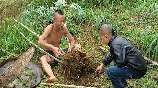 Cơm Sắn - Món Ăn Khơi Dậy Tuổi Thơ Nghèo Khó ( Rice cassava )