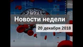 Медвестник-ТВ: Новости недели (№144 от 20.12.2018)