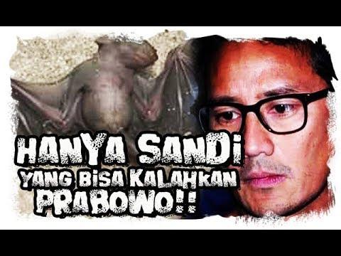 Hanya Sandi Yang Bisa Mengalahkan Prabowo  Ini Analisanya