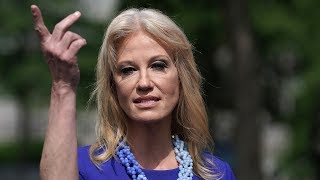 Kellyanne Conway Really, Really Doesn't Want to Talk About Her Husband  - News