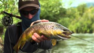 "Fly Fishing the Lower Provo River in Utah - ""Escape"""