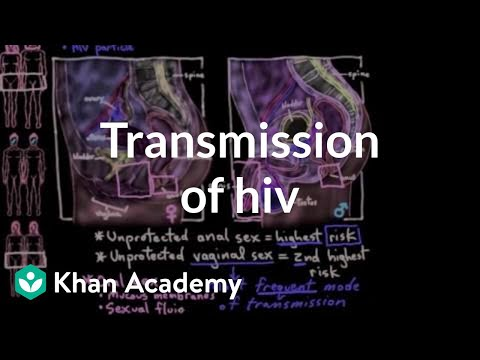 Transmission of HIV (video)   HIV and AIDS   Khan Academy