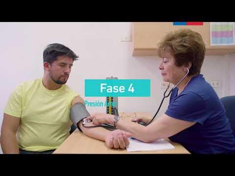 Comprar un dispositivo para medir la presión arterial de Yaroslavl
