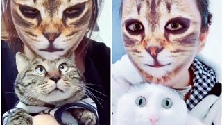 UNBELIEVABLY FUNNY 😂 Hilarious Responses of Cats 😻and Dogs 🐶When They See Cat Filter On Owners' Face