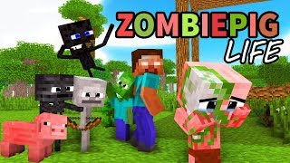 Monster School : Enderman's Life Part 5 With ZOMBIE PIGMAN's Life   BEST Minecraft Animation