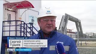 Как добывают тяжелую нефть на «Мессояхе»