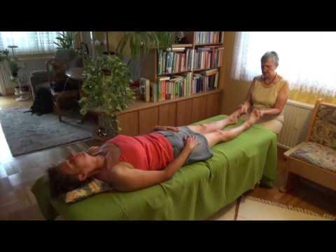 Das Ekzem bei den Ulcen trophicum