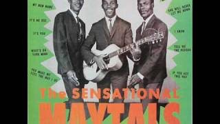 The Toots & the Maytals - It's No Use