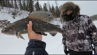 Зимняя рыбалка закрытие..18.05.2018г.