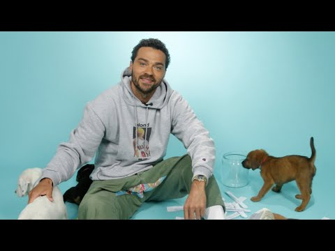Jesse Williams Plays With Puppies While Answering Fan Questions