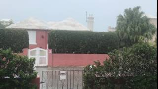 Peter Stoneberg video: It's raining cats and dogs in Bermuda