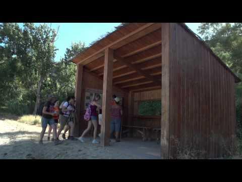 """Observatoire d""""oiseaux du rio Genil à son passage par Cuevas Bajas"""