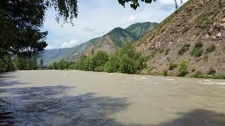 Горный Алтай. Горная река Чуя июль 2018
