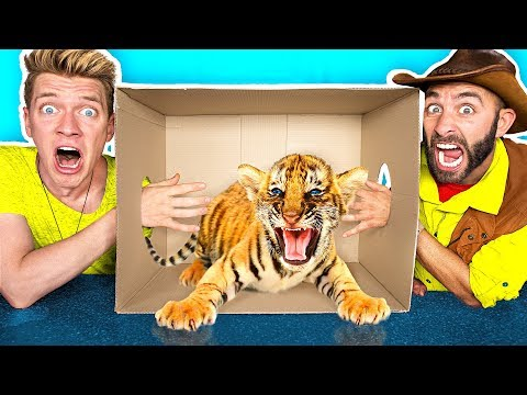 What's in the BOX Challenge!! **LIVE ANIMALS** Gross Giant Slime Orbeez & Real Food vs. Gummy Food