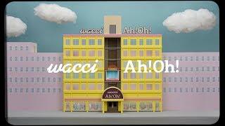wacci 「Ah! Oh!」MV