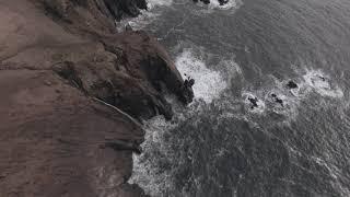 DJI FPV drone: Elk Flats Trail Oregon