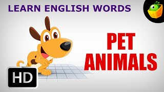 Pet Animals - Pre School - Learn English Words (Spelling) Video For Kids and Toddlers