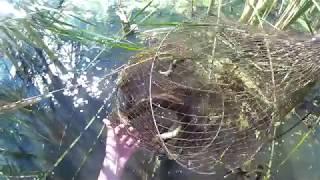 Как сделать морду для ловли щуки