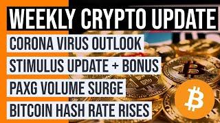 PAXG Volume Surges Massively on Kraken Exchange | Corona Virus & Stimulus Update | Bitcoin Hash Rate