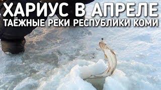 Зимняя рыбалка в коми на хариуса