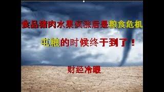 财经冷眼:中国粮食危机紧随食品猪肉水果恶性通胀,屯粮的时候终于到了!(20190901第44期)