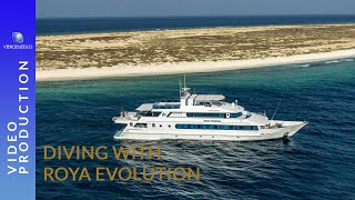 "Scuba diving in Sudan, liveaboard ""MY Royal Evolution"""