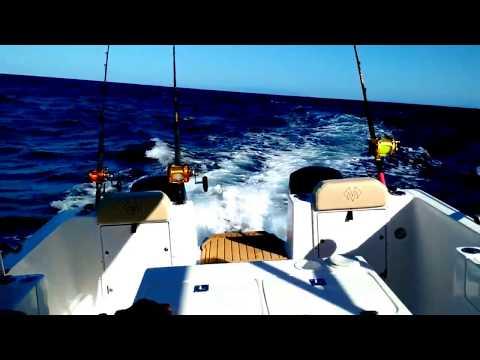 catamatan NOMAD 8XF em alta velocidade em mar aberto.