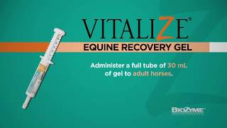 Vitalize® Equine Recovery Gel