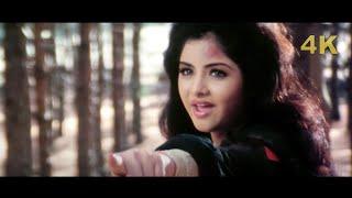 Divya Bharti Song 4K   Tu Pagal Premi Aawara   Shola Aur Shabnam   Govinda   Bollywood 4K Video Song