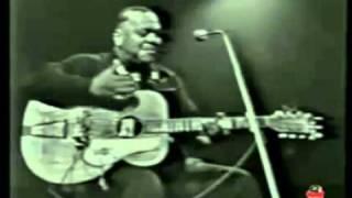 Big Joe Williams   She Left Me A Mule To Ride 1966 mpg