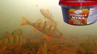 Аминокислоты для ловли рыбы