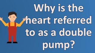 Why is the heart referred to as a double pump ?  | Best Health FAQS