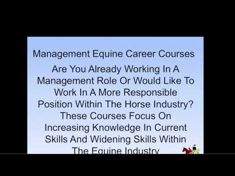 Online Horse Courses - YouTube