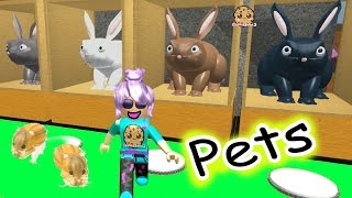 Hamsters In The House - Roblox Animal House Pets - Online Game Let's Play Random Fun Video