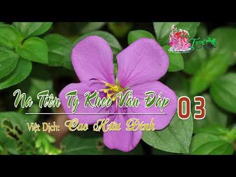 3Na Tiên Tỳ Kheo Vấn Đáp -3