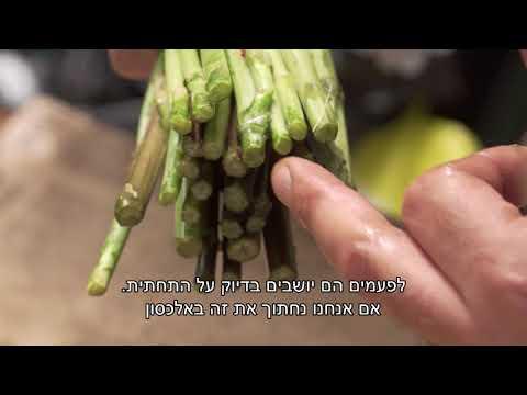סרטון טיפים לרכישה וגידול זרי פרחים