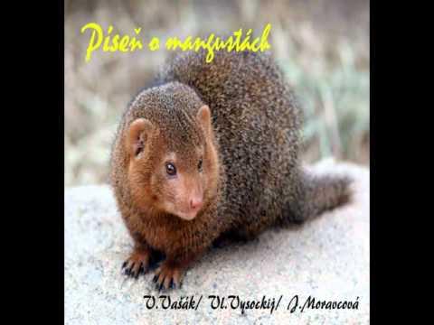 Vašek Vašák - Píseň o mangustách