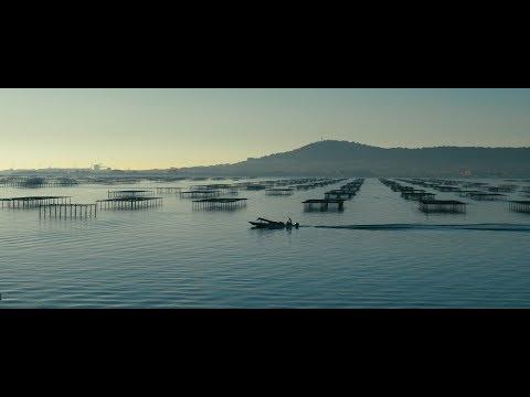 """Bande annonce court métrage """"D'une rive à l'autre"""""""