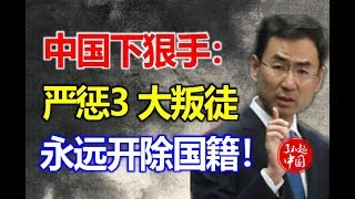 中国下狠手:严惩3大叛徒,永不恢复中国籍!