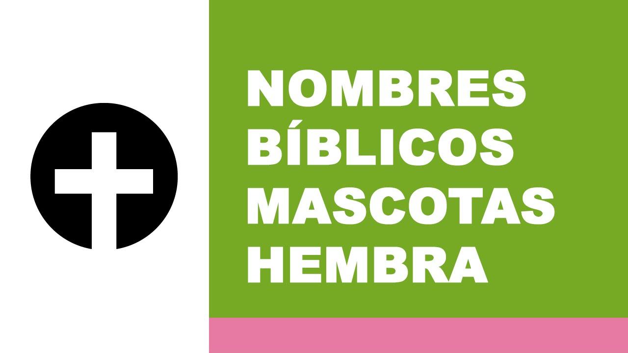 Nombres bíblicos para mascotas hembra - www.nombresparamimascota.com