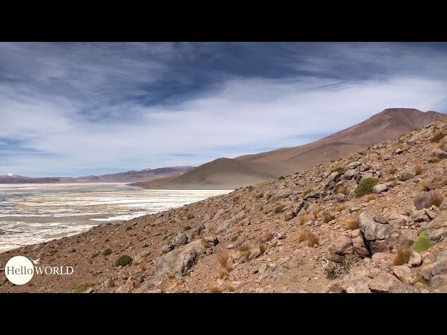 Abenteuer 100 Tage Südamerika: Blick auf die Laguna Chalviri