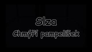 Slza - Chmýří pampelišek   TEXT   Pavel Kozler