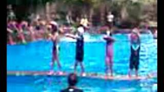 9 Falling dive